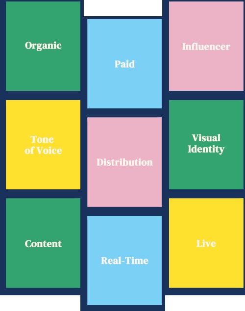 Social Instagram Grid